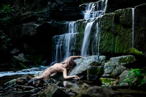 Photographer: Jay Terry